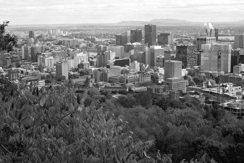 Downtown_seen_from_MontRoyal_BW