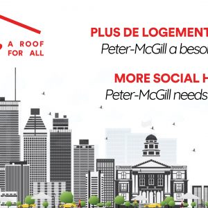 Plus de logement social / More social housing
